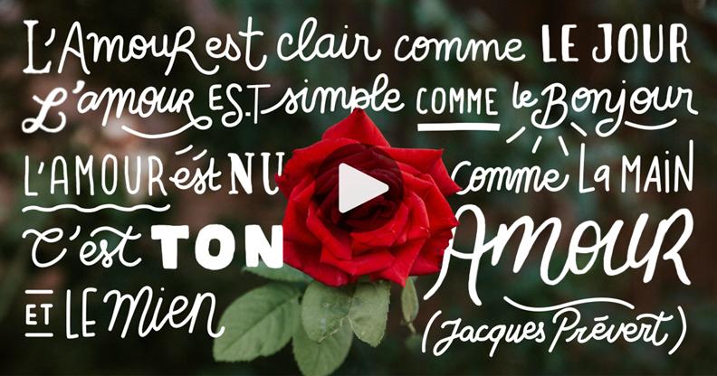 Carte L'amour est clair comme le jour, de Jacques Prévert