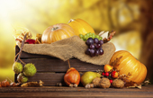 Cuisine, saveurs d'automne