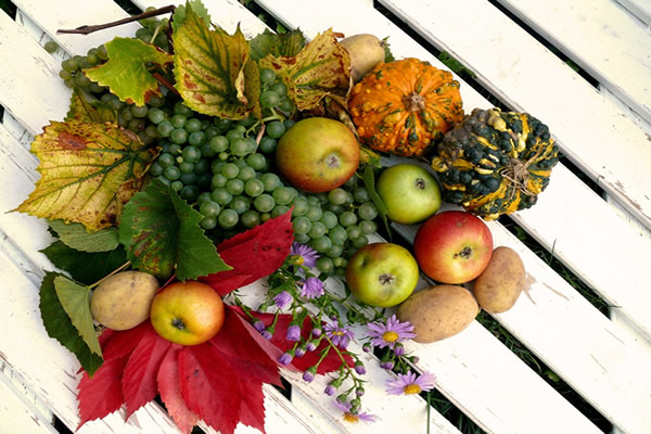 aaaAction de Grâce et Thanksgiving