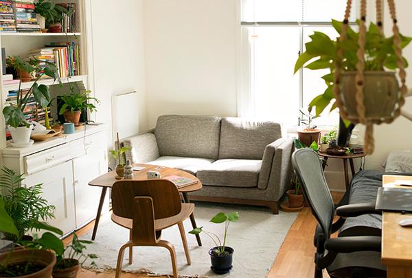 Un jardin dans votre maison