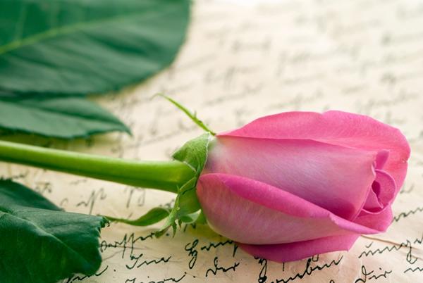 Modèle de lettre de St Valentin