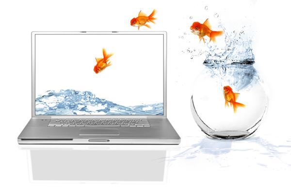 poisson d'avril sur ordinateur