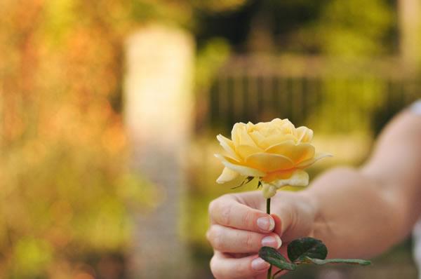 Résultats de recherche d'images pour «le pardon c est l amour»