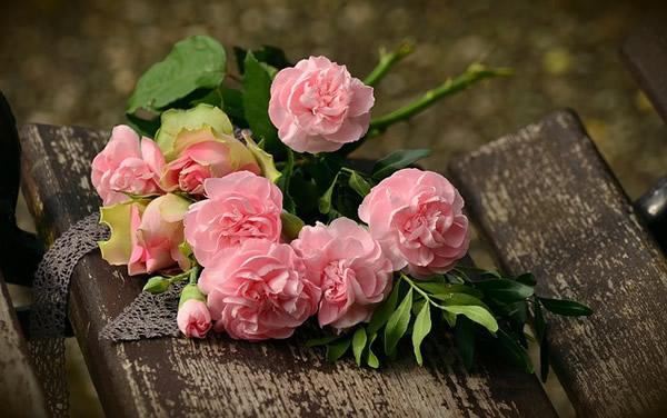 """Résultat de recherche d'images pour """"rose dernier souffle"""""""