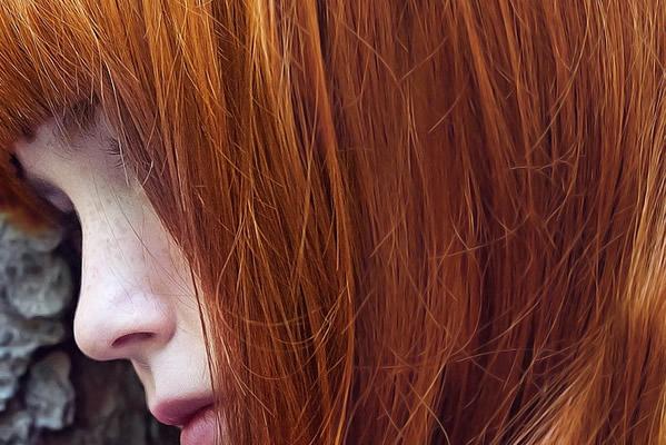 Cheveux roux