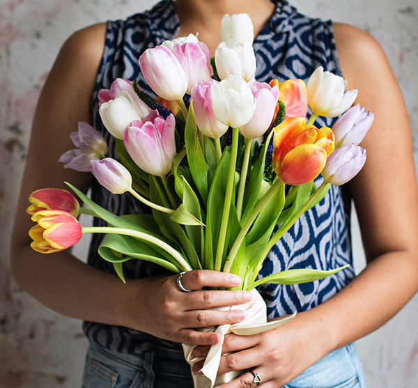 Offrir un grand bouquet de tulipes