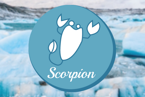 Profil Du Signe Astrologique Scorpion