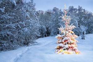 Formules de souhaits de Joyeux Noël